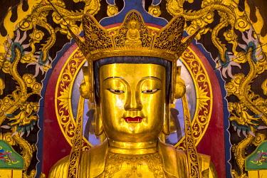 MY02370 Buddha at Kek Lok Si Temple, George Town, Penang Island, Malaysia