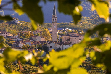 Italy, Veneto. Prosecco Road. Treviso district. Valdobbiadene. vineyards of Prosecco. Santo Guia Village.