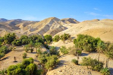 ISR0652AW Palestine, West Bank, Jericho. Wadi Quelt, Prat River gorge.