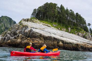 USA14036 USA, Alaska, Kenai Fjords National Park, Aialik Bay. Kayaking past sea lions on Chiswell Islands.