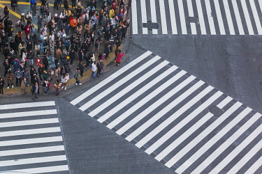 TPX68959 Japan, Honshu, Tokyo, Shibuya, Shibuya Crossing, Crowds Waiting to Cross Road