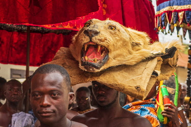 GHA0240AW Ghana, Kumasi, Akwasidae festival. Procession with a lion's head preceding the entrance of the king. Ghana, Kumasi, The Akwasidae Festival (alternate, Akwasiadae) is celebrated by the Ashanti people a...