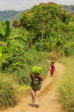 GHA0248AW Ghana, Lake Bosomtwe. Women walking with their plantains on the road at the lake.