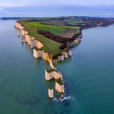 UK08470 UK, England, Dorset, Isle of Purbeck, Swanage, Jurassic Coast, The Foreland or Handfast Point, Old Harry Rocks
