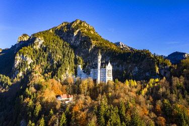 IBXMOX04795249 Drone shot, Neuschwanstein Castle in autumn, Schwangau, Ostallgau, Allgau, Swabia, Upper Bavaria, Germany, Europe