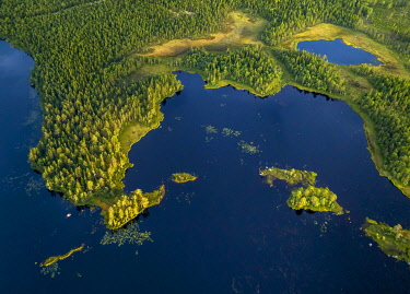 IBXGZS04808451 Drone shot, boreal, arctic conifers in wetland at the lake with small islands, Jävre, Norrbottens län, Sweden, Europe