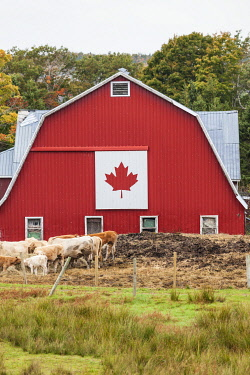 CA05116 Canada, Nova Scotia, East Bay, barn with Canadian flag, autumn