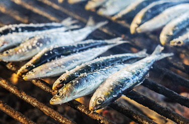 SPA8786AW Spain, Cantabria, Castro-Urdiales, grilled sardines cooking