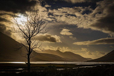 IBXSEI04810517 Birch (Betula) in backlight and dramatic clouds with Loch Etive in the background, Glen Coe, Rannoch Moor, west Highlands, Scotland, Great Britain