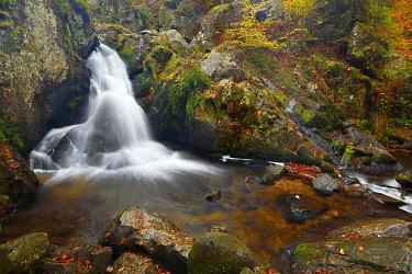 IBXSHU04814907 Waterfall, Petit Cascade de Tendon, Vosges, Alsace, France, Europe