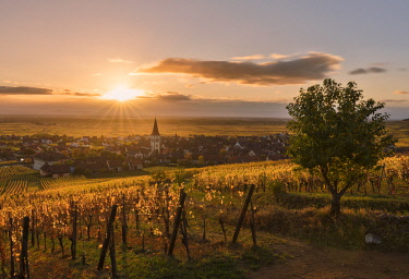 CLKAC75935 Village of Ammerschwihr at sunrise surrounded by vineyards of the Grand Cru along the Wine Route, Alsace, Haut-Rhin, France Europe