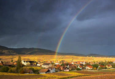 CLKAC75936 Golden light and rainbow over Hunawihr surrounded by the vineyards of Grand Cru in Alsace, France Europe