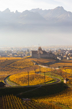 CLKMC98290 View of the medieval Aigle castle and the surrounding vineyards and railway in autumn. Canton of Vaud, Switzerland.