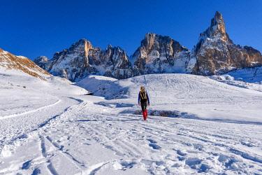 CLKFR103747 Passo Rolle, Pale di San Martino mountain, Trentino Alto Adige region, Dolomites Alps, Italy, Europe (MR)