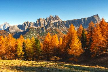 CLKMR97751 Lastoi de Formin in autumn season, Cortina d'Ampezzo, Veneto, Italy.
