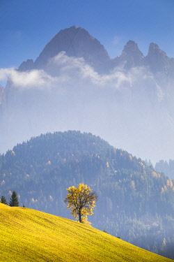 CLKST97255 Funes Valley during autumn, Bolzano province, Trentino Alto Adige, Italy