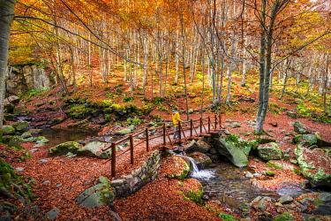 CLKST99881 Appennino Tosco - Emiliano natural park, Dardagna Falls path,  Modena province, Emilia Romagna, Italy
