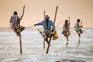 SRI2257AW Stilt Fishermen at dusk, Weligama, South Coast, Sri Lanka, Asia