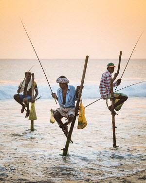 SRI2259AW Stilt Fishermen at dusk, Weligama, South Coast, Sri Lanka, Asia