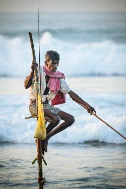 SRI2262AW Stilt Fisherman at dawn, Weligama, South Coast, Sri Lanka, Asia