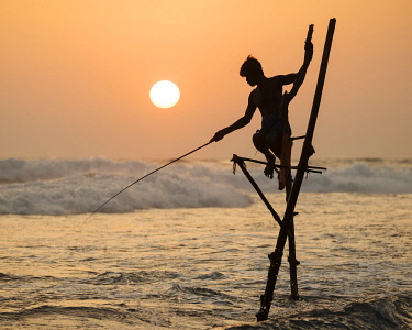 SRI2269AW Stilt Fishermen at dusk, Weligama, South Coast, Sri Lanka, Asia