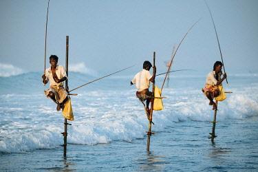 SRI2272AW Stilt Fishermen at dawn, Weligama, South Coast, Sri Lanka, Asia