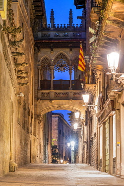 SPA8965AWRF Carrer del Bisbe street, Gothic Quarter, Barcelona, Catalonia, Spain
