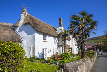 UK08481 Thatched cottage, Croyde, Devon, England, UK