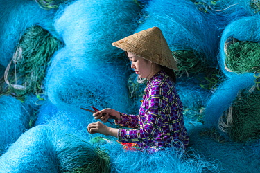 VIT1564AW A Vietnamese woman mending blue fishing net, Mekong Delta, Vietnam