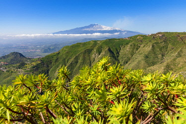 ITA13791AW Europe, Italy, Sicily. View towards the Mount Etna from the hiking path from Castelmola to Mount Venere