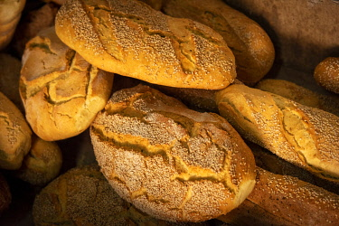 ITA13810AW Europe, Italy, Sicily. Sant'Angelo Muxaro. White bread loaves in the traditional bakery.