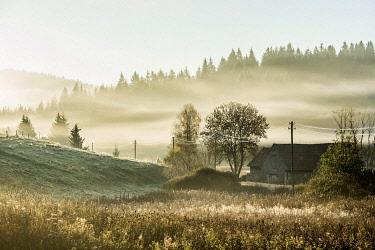IBXDJS04834550 Hilly landscape in the morning fog in autumn, Jostal, Black Forest, Baden-Wurttemberg, Germany, Europe