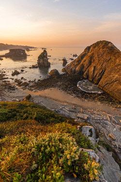 IBXMMW04854402 Sunrise, rugged coastal landscape with many rock islands, Arch Rock, Harris Beach State Park, Oregon, USA, North America
