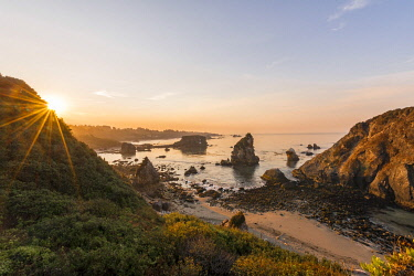 IBXMMW04854404 Sunrise, rugged coastal landscape with many rocky islands, Harris Beach State Park, Oregon, USA, North America