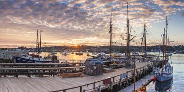 US03742 USA, New England, Massachusetts, Cape Ann, Gloucester, Gloucester Schooner Festival, schooners, dawn