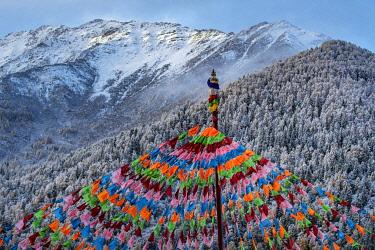 CH11819AW Asia, China, Sichuan Province, Shuangqiao Valley, Xiaojin County, Buddhist Stupa