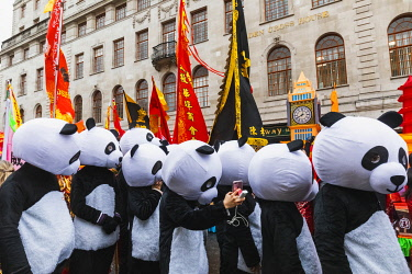 TPX69785 England, London, Chinatown, Chinese New Year Parade, Parade Participants Dressed in Panda Costume