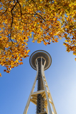 USA14428AW Autumn Leaves and Space needle, Seattle, Washington, USA