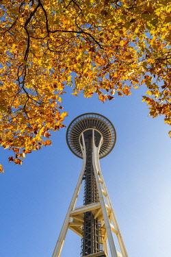 USA14428AW Autumn Leaves and Space needle, Seattle, Washington, USA