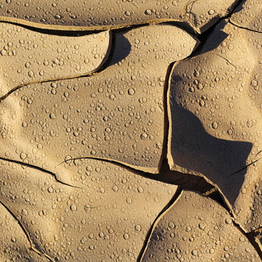 IBXANT04817029 Dried-out soil, cracks, traces of raindrops, Almeria, Andalusia, southern Spain, Spain, Europe