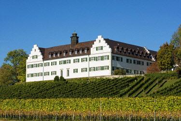IBXDJS04837881 Hersberg Castle with vineyard, Immenstaad, Lake Constance, Baden-Wurttemberg, Germany, Europe