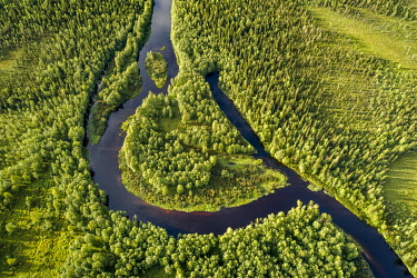 IBXGZS04820375 Drone view, aerial photo of a river loop, meander of the Kapsajoki in the boreal arctic forest, Kittila, Lapland, Finland, Europe
