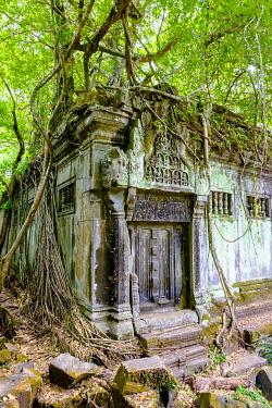 CMB1663AW Prasat Beng Mealea temple ruins, Siem Reap Province, Cambodia