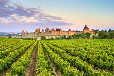 FRA11372AWRF Medieval citadel of La Cité at sunrise, Carcassonne, Aude Department, Languedoc-Roussillon, France.