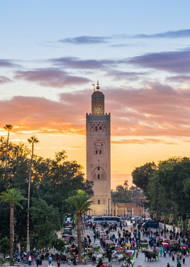 MOR2553AW Morocco, Marrakech-Safi (Marrakesh-Tensift-El Haouz) region, Marrakesh. Koutoubia Mosque at sunset, from Jmaa El-Fna square.