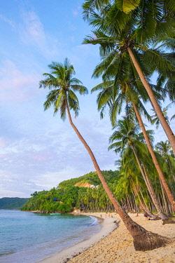 PHI1620AW Palm trees on Marimegmeg Beach, El Nido, Palawan, Philippines