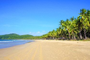 PHI1633AW Palm-lined white sand beach at Nacpan Beach, El Nido, Palawan, Philippines