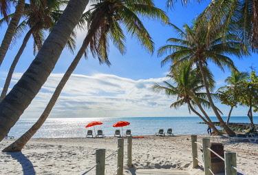USA14503AW Tropical beach, Key West, Florida, USA