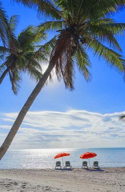 USA14504AW Tropical beach, Key West, Florida, USA
