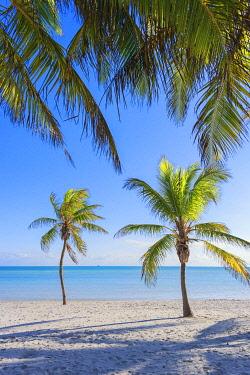 USA14506AW Tropical beach, Key West, Florida, USA